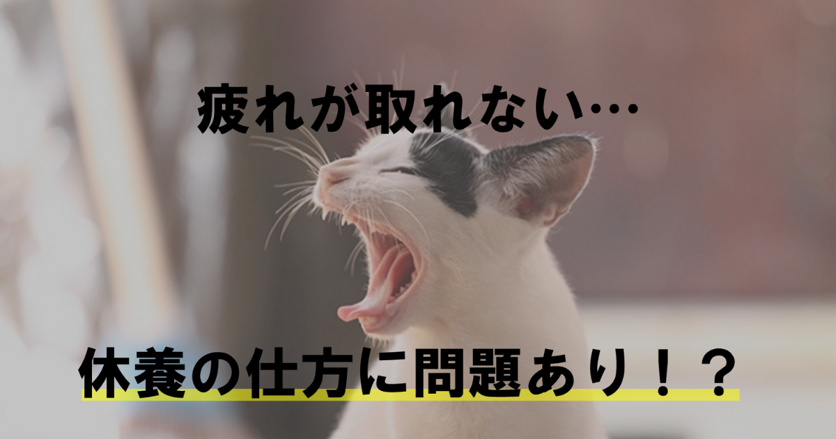 タイトルに猫があくびしているイメージ画像